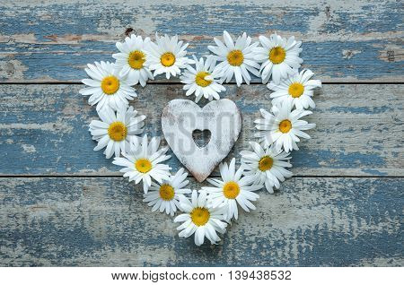 Daisy flowers in heart shape on blue painted wooden board