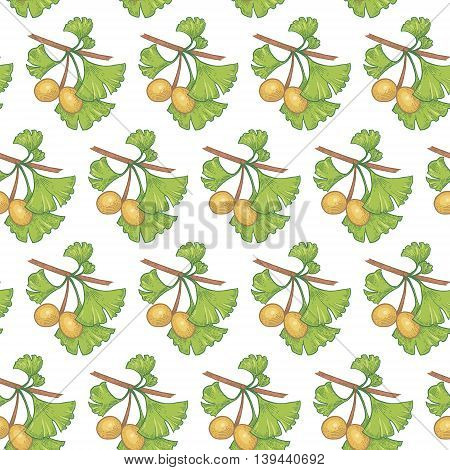 Vector seamless pattern. Branches with leaves and fruits of ginkgo biloba on a white background. Illustration for design packaging paper wallpaper fabrics textiles.