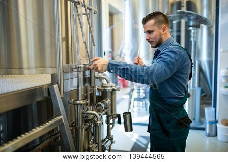 Attentive brewer working at brewery