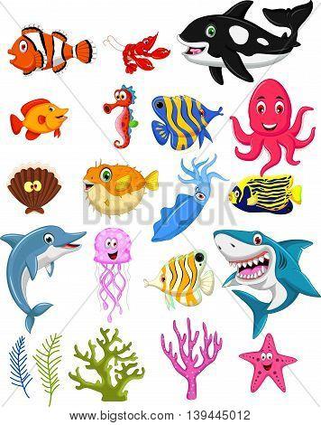 collection of cute sea animal cartoon posing