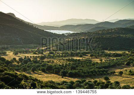 Countryside near Porto Koufo harbor in Sithonia, Greece