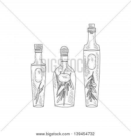 Olive Oil With Herbs Assortment Hand Drawn Realistic Detailed Sketch In Classy Simple Pencil Style On White Background
