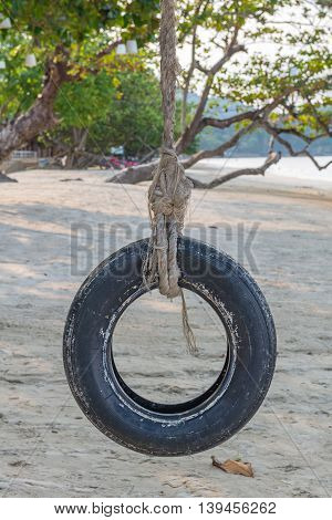 Tire Swing Under Tree On Ocean Beach