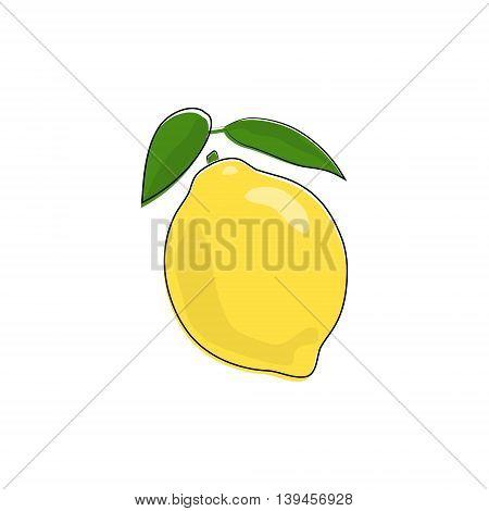 Citrus Lemon Isolated on White Background,Tropical Fruit Lemon, Vector Illustration