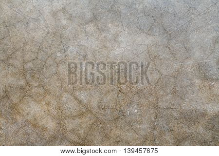 background textured surface cement on the floors