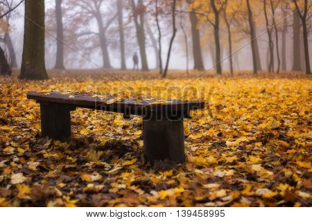 Bench with autumn leafs. In the background lonely man in the park.