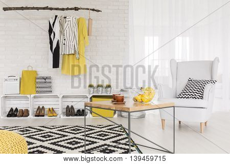 Modern Businesswoman's Cosy Living Space