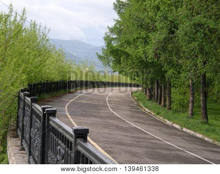 The road in the forest. Krasnoyarsk region. Siberia. Russia