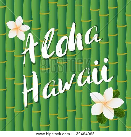 Vector design of Aloha Hawaii brush lettering text on bamboo stems background and frangipany flowers. Tropical Poster or banner design