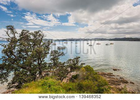 Sailboats on the coast of Paihia Northland New Zealand
