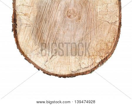 Old alder wooden round timber isolated on white background. Rough cutting roundwood