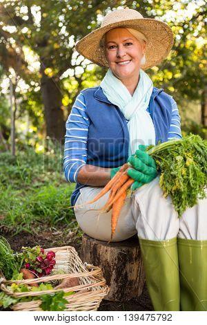 Portrait of happy mature gardener with fresh organic carrots sitting at garden