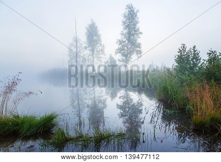 Morning fog over the river with silhouettes of trees in the smog