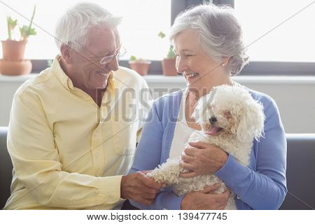 Senior couple holding a dog in a retirement home