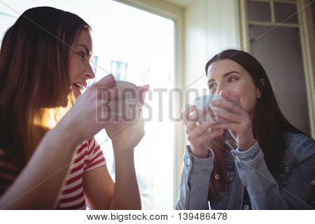 Happy young female customers talking at cafe
