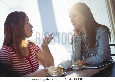 Young female friends communicating at cafe