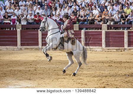 Ubeda SPAIN- October 2 2010: Portuguese bullfighter on horseback Joao Moura bullfighting in the bullring of Ubeda Spain