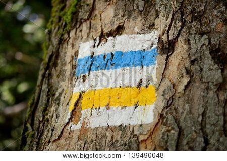 Blue and yellow trail sign. Shallow depth of field