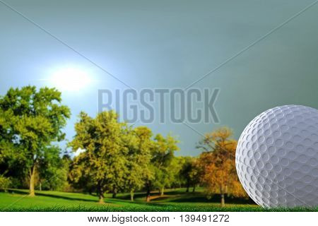 3d illustration of a golf ball on a course