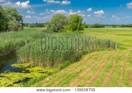 Summer landscape with small river Merla and rows of mowed hay in central Ukraine