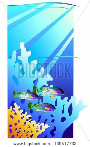 Coral reef. Underwater with fishes. Vector illustration