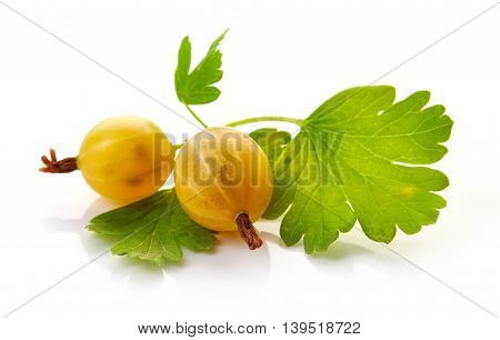 Yellow Gooseberry Isolated On White