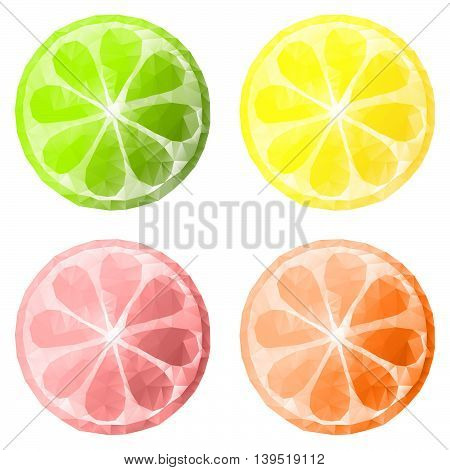 slices of citrus fruits isolated on white background, polygonal design, low poly style