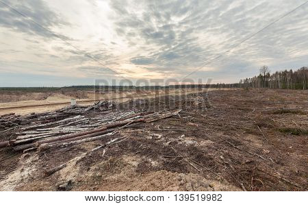 Felling forests near the sand pit. Human impact on the environment.