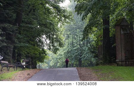 empty bench and a woman strolling down the avenue in the old park Pacławska Kalwaria Poland