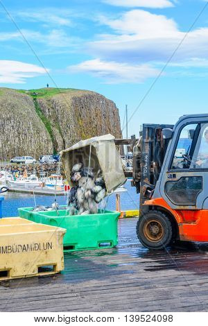 Fishing Port Scene In Stykkisholmur