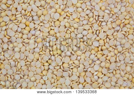 Beautiful gruop  Dried soybean texture background .