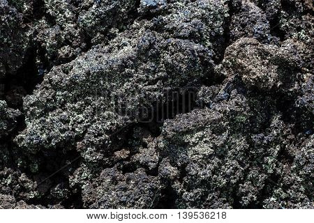Closup of basalt rock with small lichens growing on the surface also useful as a background or texture.