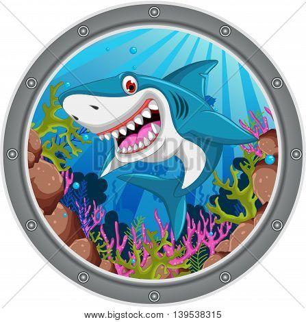 cute angry shark cartoon on the frame
