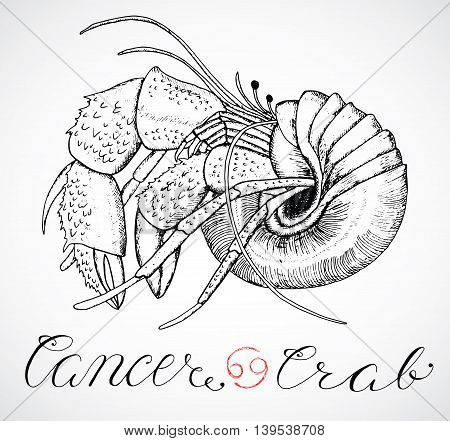 Hand drawn astrological zodiac sign Crab or Cancer. Line art vector illustration of engraved horoscope symbol. Traditional style. Doodle drawing and sketch with calligraphic lettering