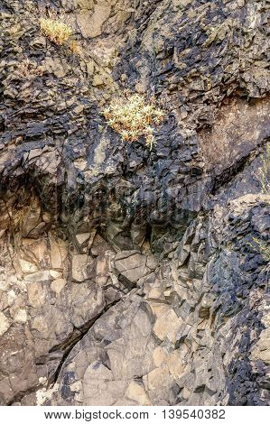 Close up old weathered gray rock textured background