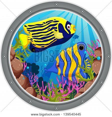 cute two angel fish cartoon on the frame