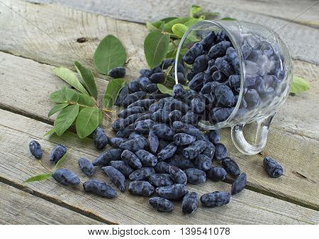 Pile of blue honeysuckle berries in a glass cup on wooden table