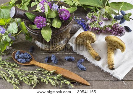 Still life with healing herbs, mushrooms and berries