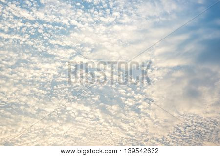 looking up at Evening sky and cloud nature background.