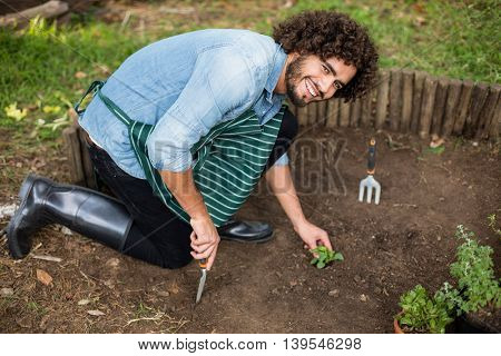 High angle portrait of male gardener planting outside greenhouse