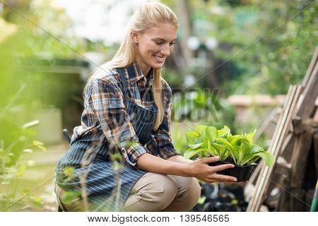 Side view of smiling female gardener holding potted plant