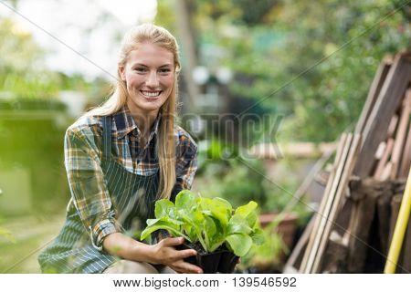 Portrait of smiling female gardener holding potted plant outside greenhouse