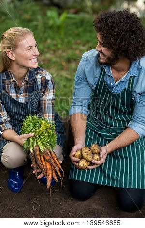 Happy coworkers looking at each other while holding harvested vegetables on fled