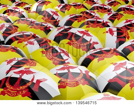 Umbrellas With Flag Of Brunei
