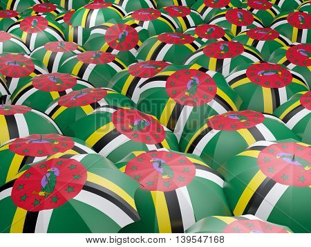 Umbrellas With Flag Of Dominica