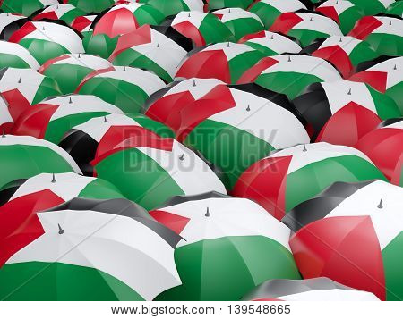 Umbrellas With Flag Of Palestinian Territory