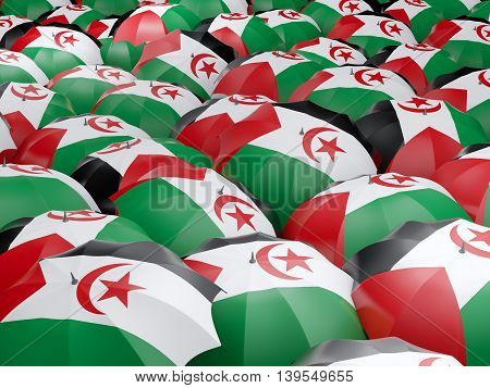 Umbrellas With Flag Of Western Sahara