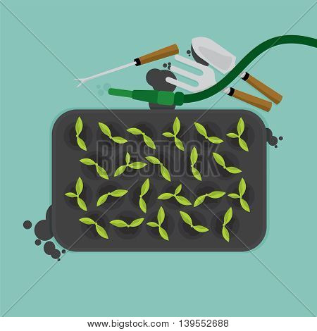 Top View Of Cultivate Tray With Gardening Equipment Vector Illustration. EPS 10