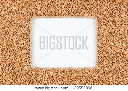Frame made of rope with wheat grains and a white background with space for your text