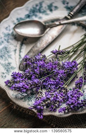 Close up of fresh lavender flowers, close up